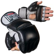 Combo Grappling and Bag Gloves
